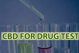 CBD For Drug Test