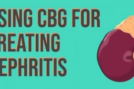 CBG For Nephritis,CBD Oil For Sale,CBG products,CBG For Sale
